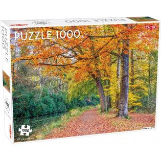Puzzle 1000 Pathway by a...