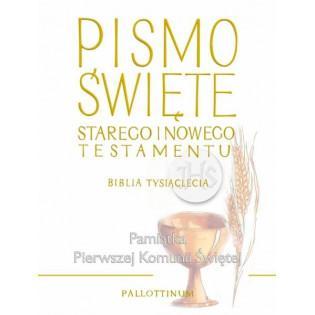 Biblia Tysiąclecia duża TW...