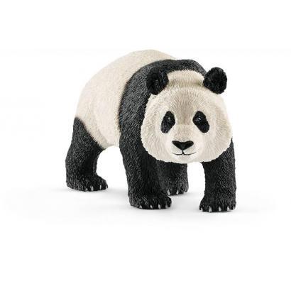 Panda wielki samiec ---: