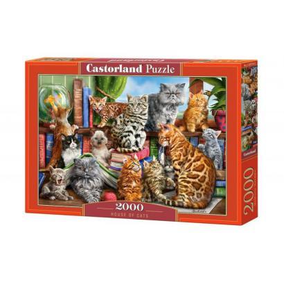 Puzzle 2000 elementów -...
